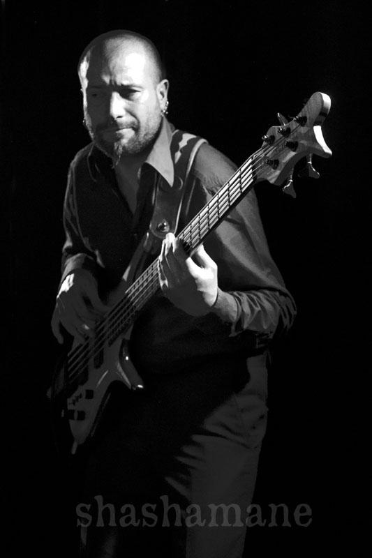 gagadilo's excellent bassist