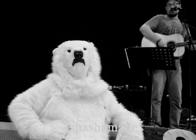matt watson and polar bear