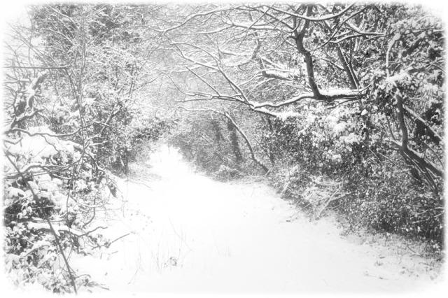 winter's vanishing point