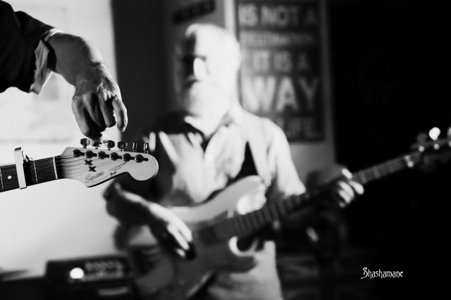 Tony Brook Band (c) shashamane 2015