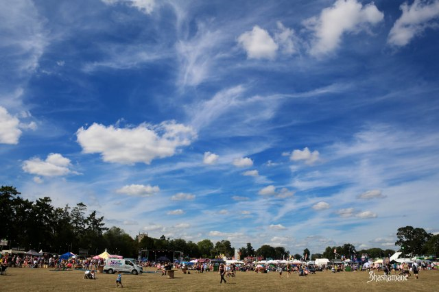 vw whitenoise festival