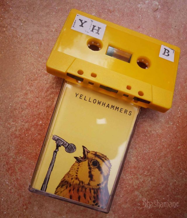 yellowhammers
