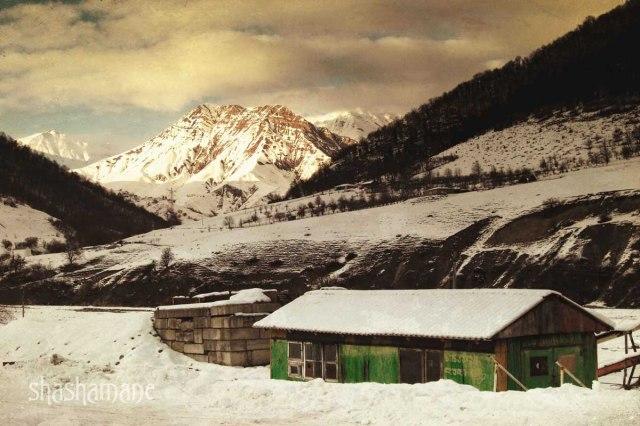 the green barn 15x10